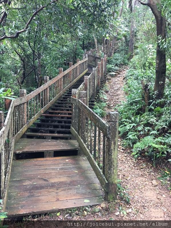 看到木棧梯就快到觀景台了
