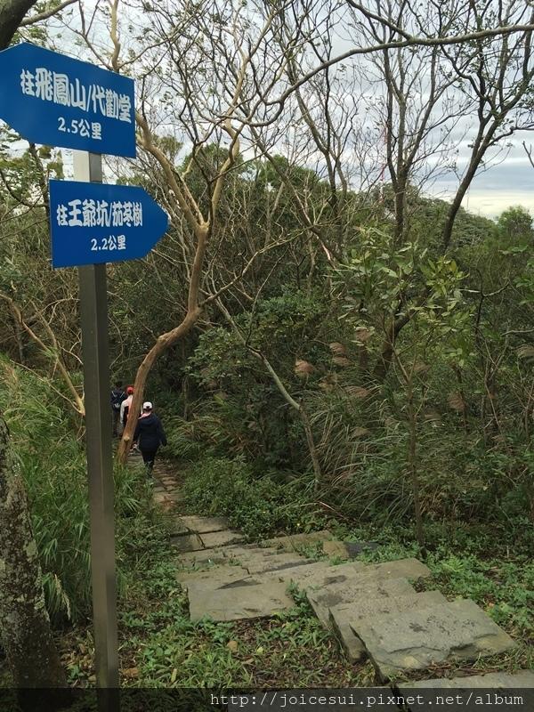 這邊有一條下山的路