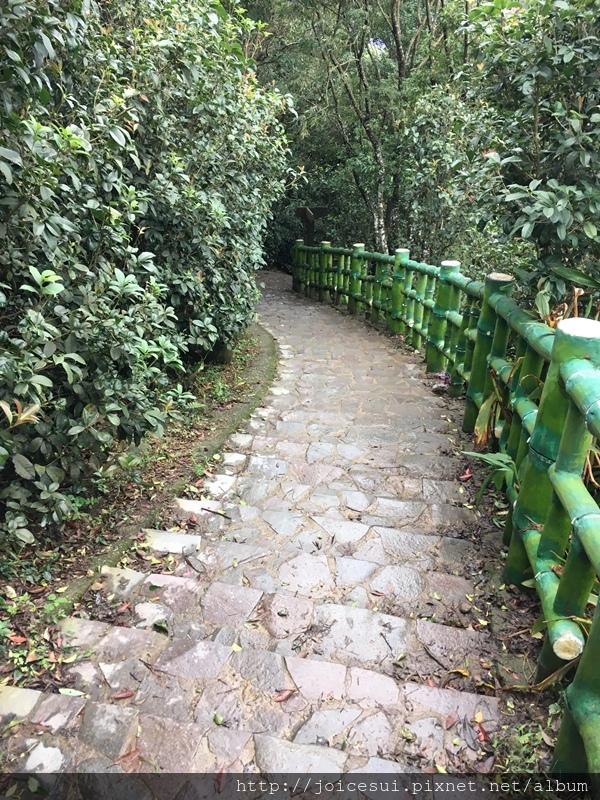 走完這段一小段樓梯會遇到岔路