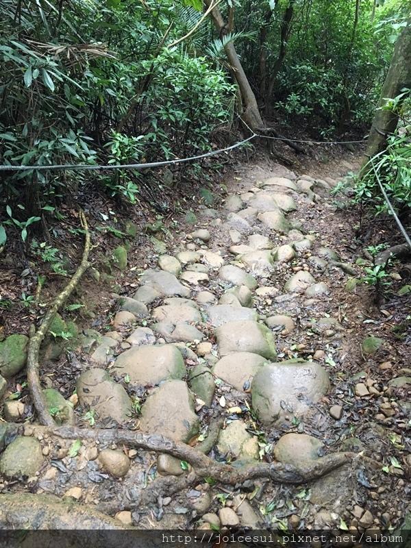 石頭和土有點滑一定要小心