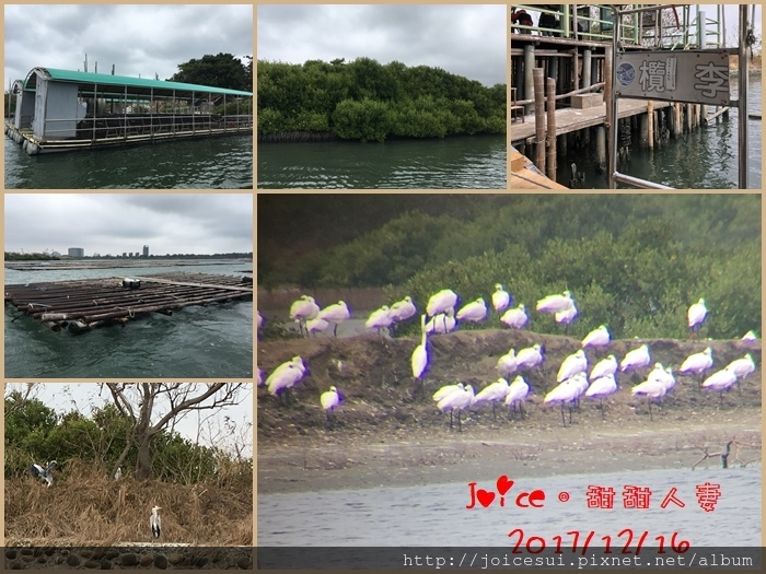 12%2F16 台江漁樂園