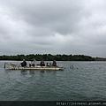 走嘉南大圳,他們在釣魚~