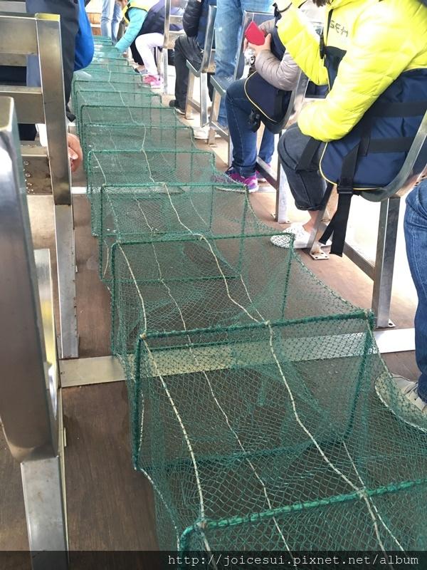 這是蜈蚣網