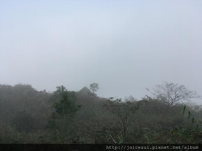 霧太濃看不見風景
