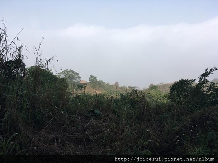 霧超濃完全看不到景色XD