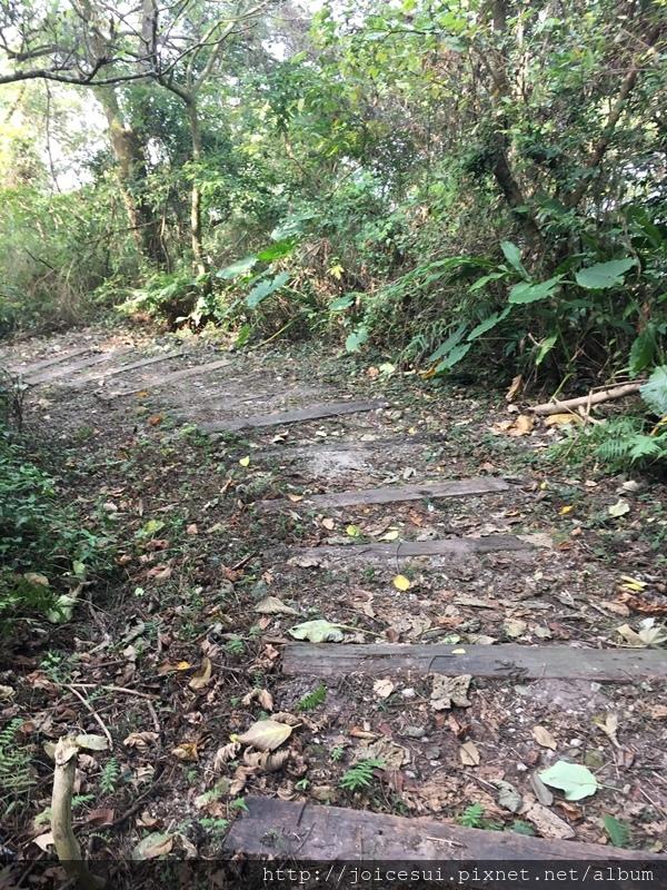 算平緩的階梯,挺好走的