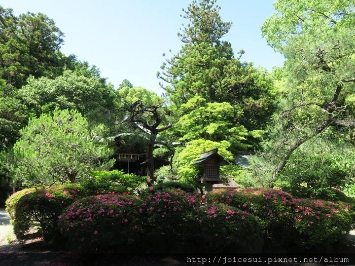 很日式園林風