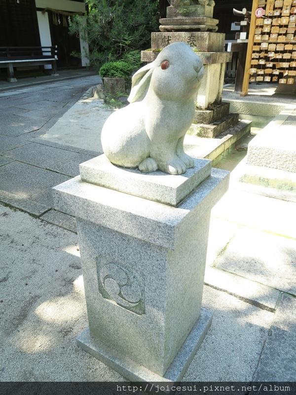 兔兔為守護神