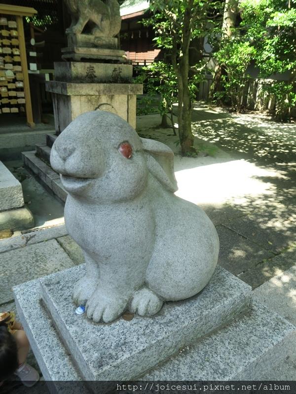 右邊的兔兔