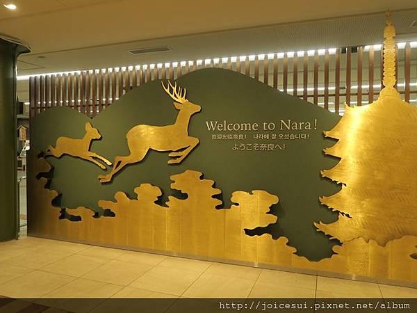嗨,奈良~