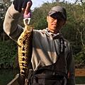 11/11早上去頭社水庫釣魚