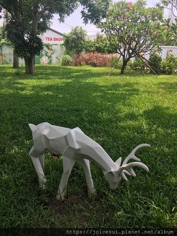 草地上的白鹿