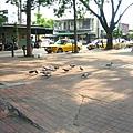 鳳山車站前廣場