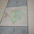 文化中心站磁磚--熱帶魚?