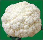 農委會花椰菜圖