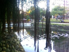 新竹 護城河a.jpg