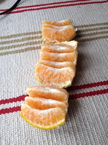 橘子切法 一條龍 一長條
