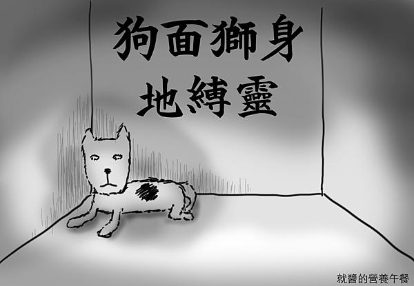 訓練狗狗 不怕打雷