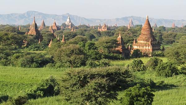 Bagan D