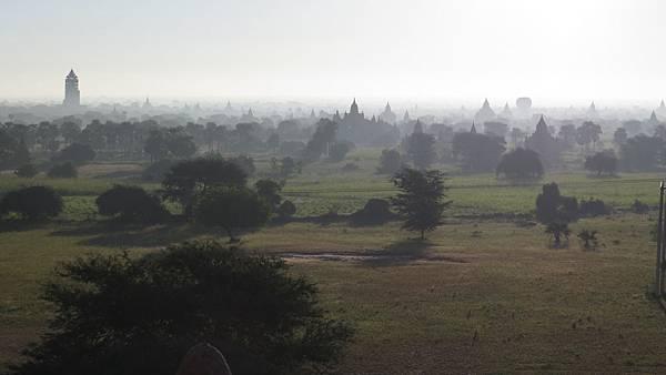 Bagan M