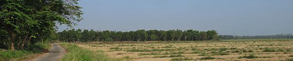 臺糖沙崙農場
