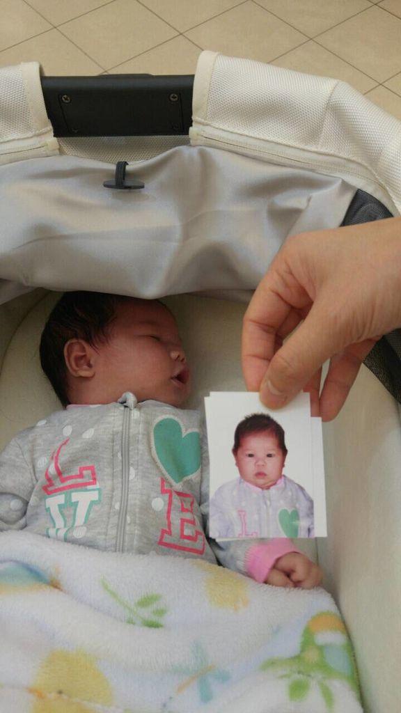 海琪新護照 0120-01