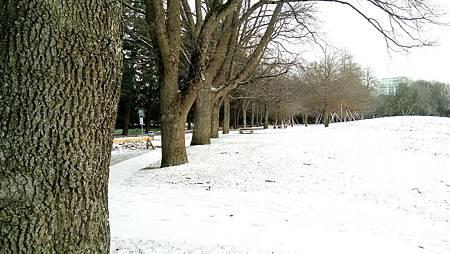 下雪蹓海琪 0204-03