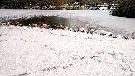下雪蹓海琪 0204-04