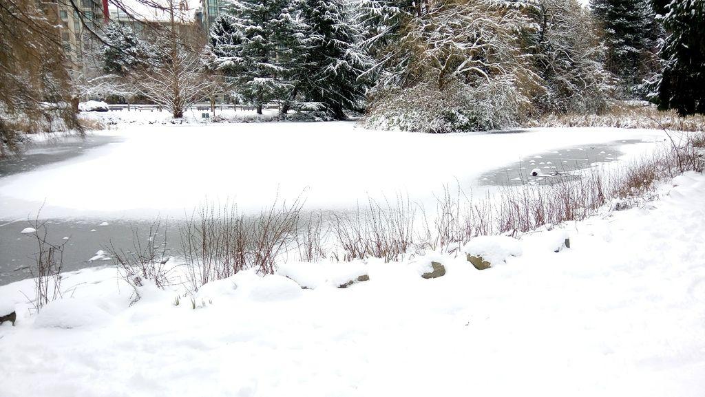 下雪蹓海琪 0211-04