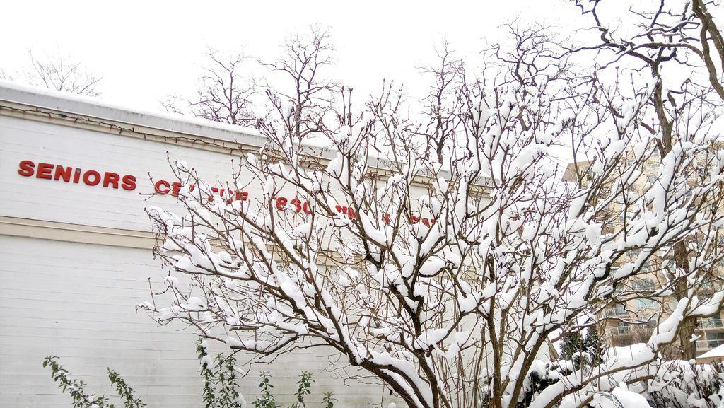 下雪蹓海琪 0211-09