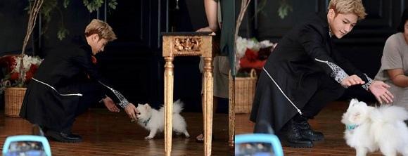 「對我而言可愛的她」L,拍攝現場 連小狗也俘虜的魅力 「溫暖的花美男」