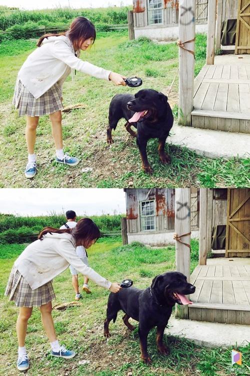 《華麗的誘惑》金賽綸為狗狗吹風 畫面超有愛