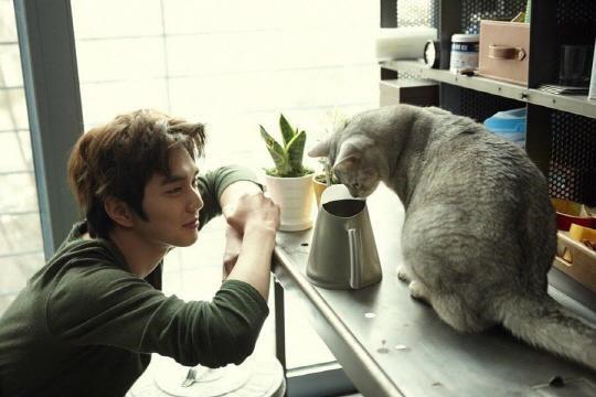 俞承豪出演新劇 與貓咪為伴引期待
