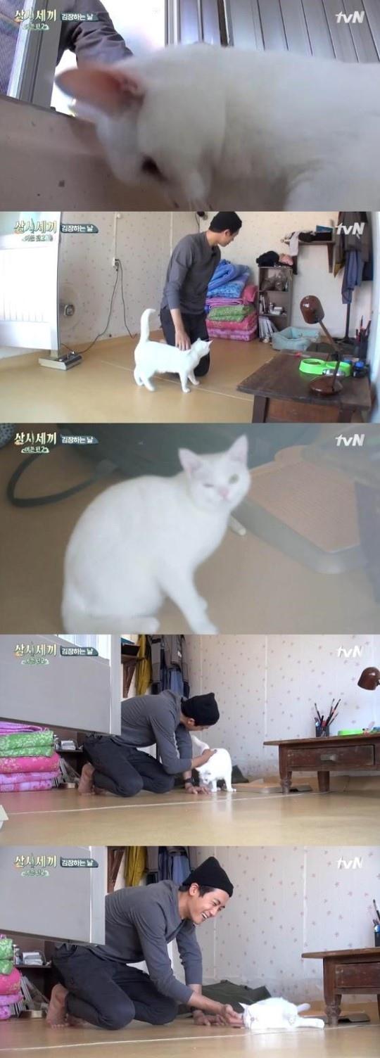 《三時三餐》朴炯植與貓咪「邂逅」 帥氣微笑暖人心