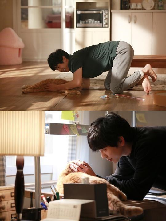 《想像貓》曝現場照 俞承豪與貓咪互動引期待