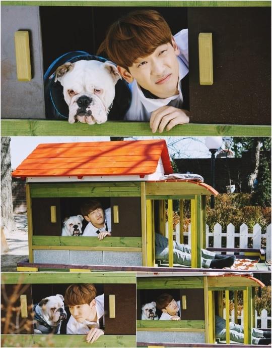 《回來吧大叔》發劇照 Rain與小狗共處一室搞笑十足