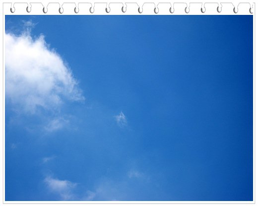 web019.jpg