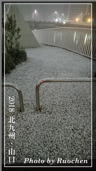 博多市區開始積雪