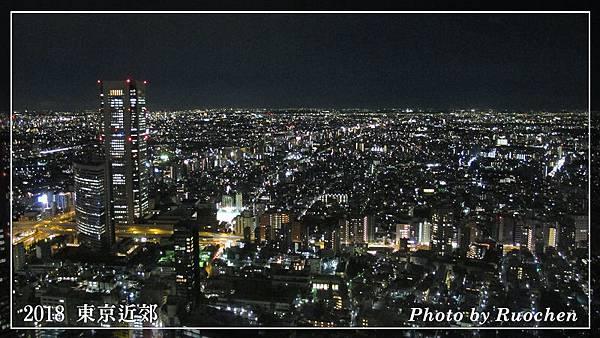 東京都廳夜景