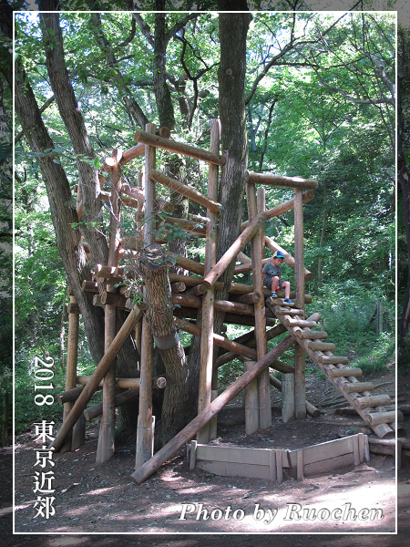 朵貝.楊笙曙光兒童森林公園