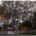 龍頭山公園:釡山塔