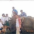 89臺東風帆營16