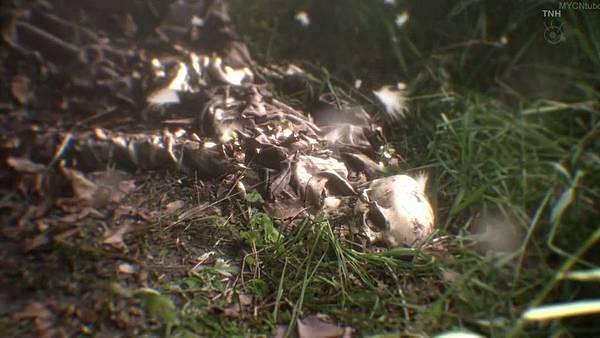 櫻子小姐的腳下埋著屍體 第八話