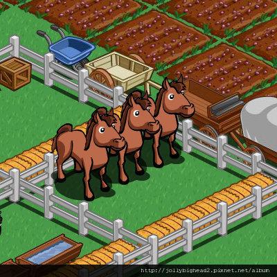 FarmVille -- 馬