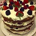 My Triple Berry Cake -11/3/2010 (1)