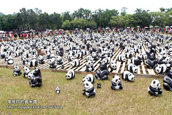 1600貓熊世界之旅 南投場