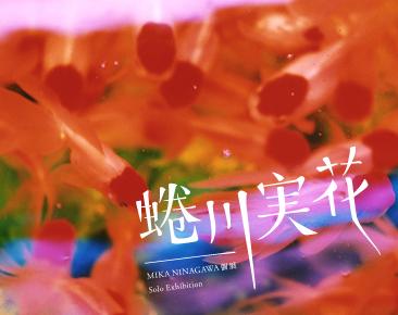 2011/7/23~8/29 蜷川實花 台北攝影展