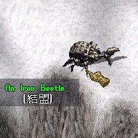 鐵甲蟲-暗銅色