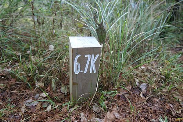 每100公尺有一個~今天要走210個