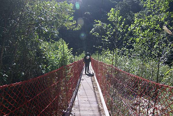過橋的背影